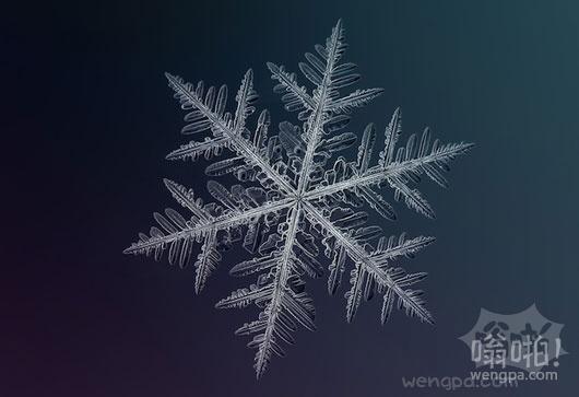 令人惊叹的独特的美丽的雪花宏详细