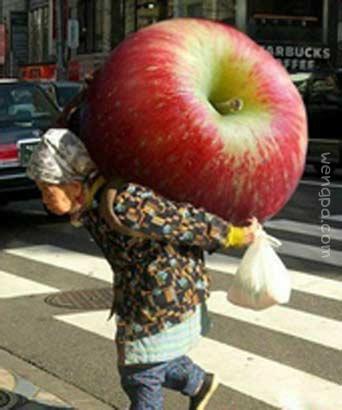 今天平安夜,给孙女儿买一大苹果