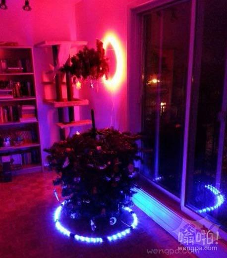 我家的圣诞树,很炫吧