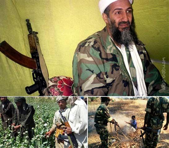 AK-47与它的杀戮世界