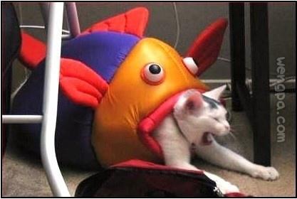 啊,我再也不敢吃鱼了