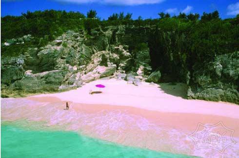 美国邻居对我们免签了 快去享受粉海滩
