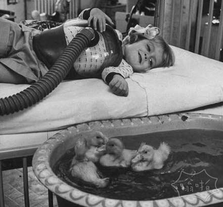 这些在病房里的小鸭子是为了让病中的小女孩振作起来