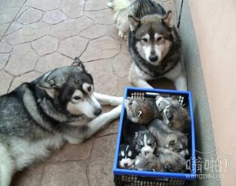 温馨的家庭照片