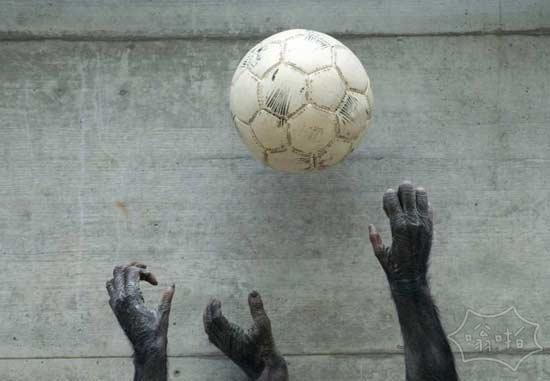 拿足球投篮也玩的很开心