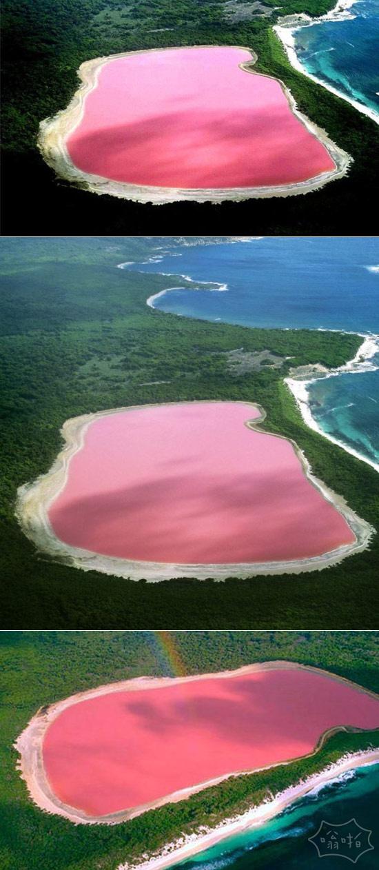 澳大利亚粉红色的湖Hillier