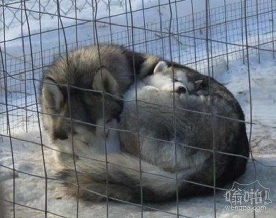 冬季妈妈和宝宝