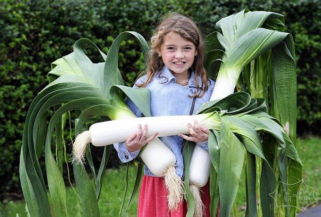9岁失聪女童种巨型蔬菜获大奖