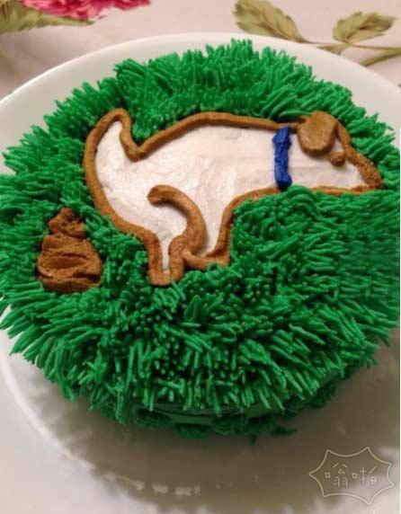 姐姐的生日蛋糕让我感到吃惊