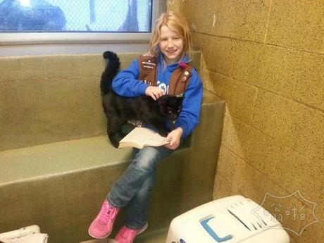 美国宾夕法尼亚洲一间动物救助站发起的「书友」伴读活动,邀请小孩子到救助站内阅读故事书,陪伴无家可归的猫咪们。