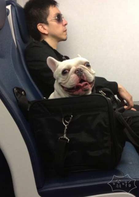 火车上的一个家伙今天早上的呼吸很困难,流口水,并且不会停止盯着我看…