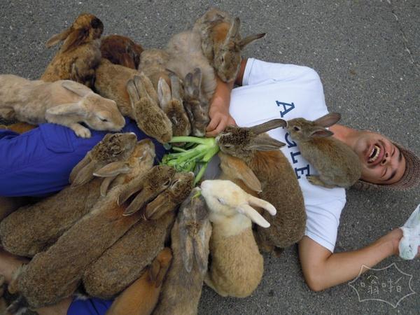 他在喂兔子