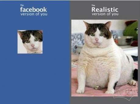 社交网站中的我&现实中的我