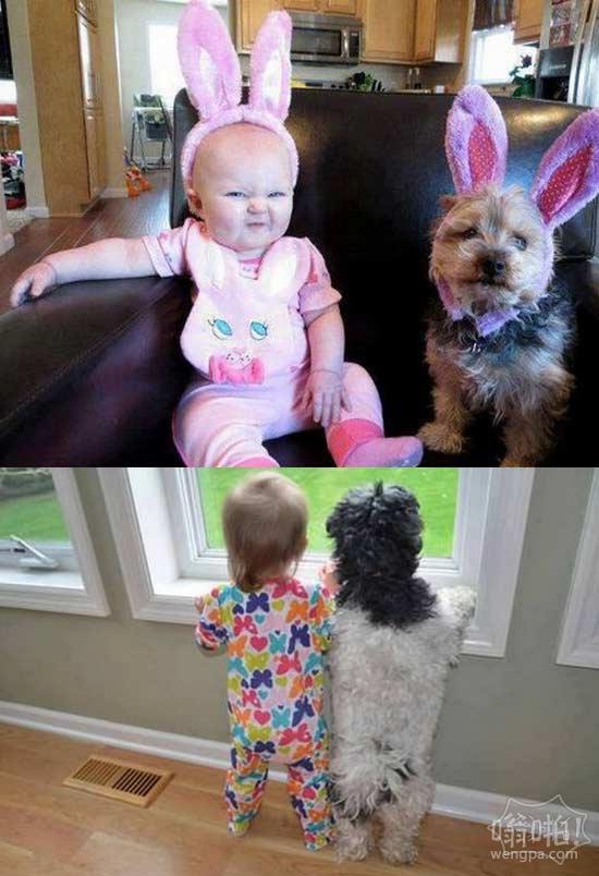 为什么孩子需要宠物