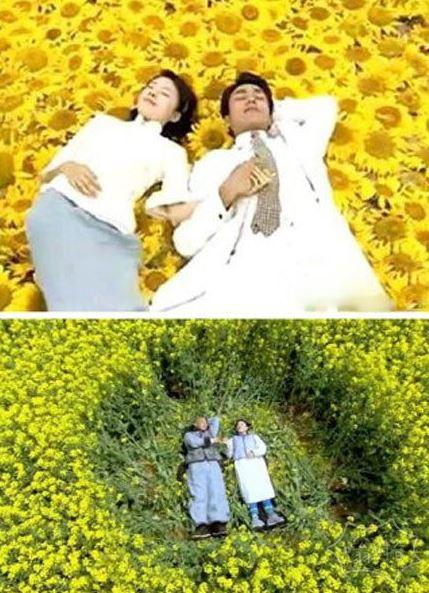 """""""宫锁连城""""搞了个陆毅和袁姗姗一起躺油菜花?!"""