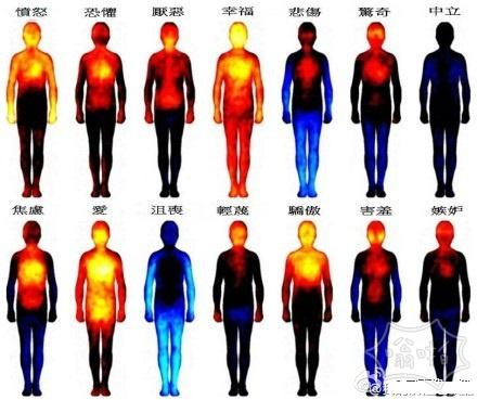 各种情绪时的热成像图~~原来幸福的时候全身都会温暖起来~
