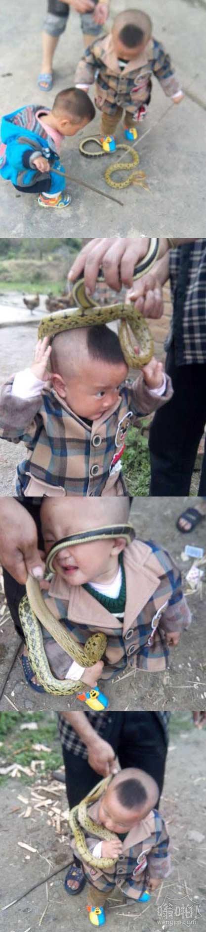 这家长还真放开了让孩子玩蛇