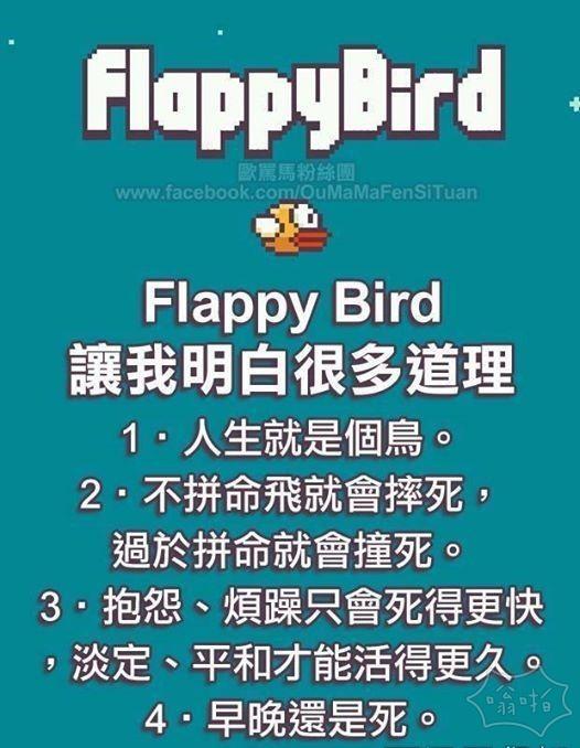 真理 不过玩了flappy bird想砸手机