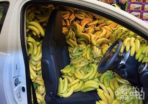 给香蕉当司机
