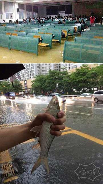 南方暴雨致大学教室看海 深圳街头捞鱼