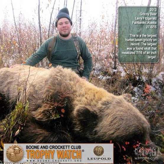 史上最大的熊被杀:2.74米高灰熊被阿拉斯加猎人捕获