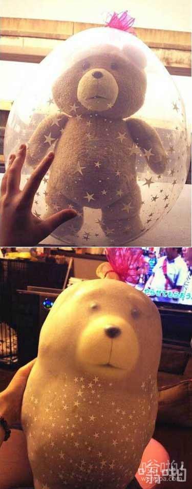有位网友精心制作了用气球包装的泰迪熊作为礼物送人,看上去效果真的是超级棒!可是第二天却变成了。。。。。这叫他怎么送的出手…