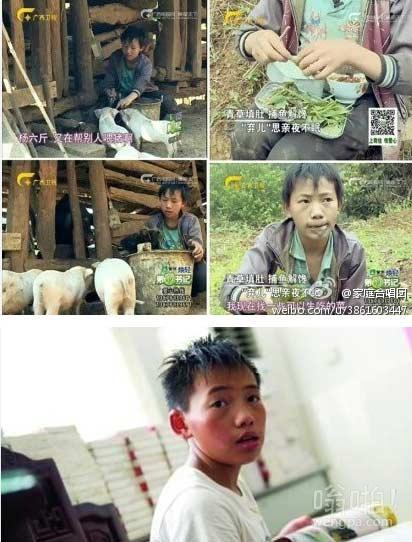 """#怎样才是帮杨六斤#那个孤独生活多年、曾靠吃野菜维生的14岁男孩儿杨六斤成了""""香饽饽"""",从""""弃儿""""到""""宠儿"""",我们该怎样帮助杨六斤"""