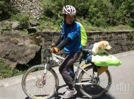 川藏骑行路上偶遇汪星人搭车去西藏