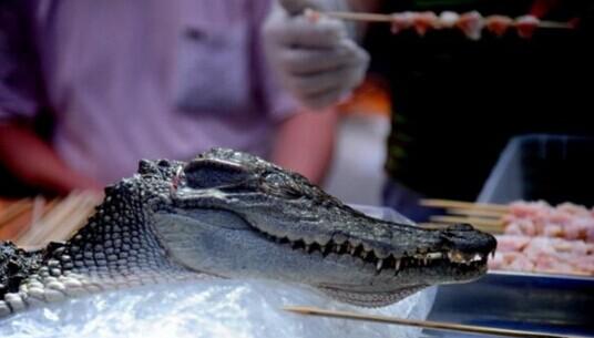 沈阳现鳄鱼烤串20元1串 号称孜然鳄鱼外焦里嫩(图)