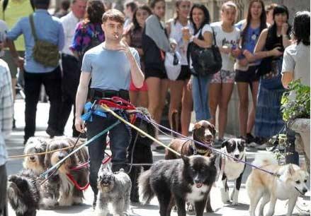 近日,有网友街拍到哈利·波特叼着烟,全身五花大绑了12条遛狗绳。。。 有网友调侃道真想扔根骨头试试
