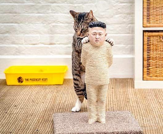 爪出来的大独裁者!艺术家制作猫玩具抗议网络审查(视频)