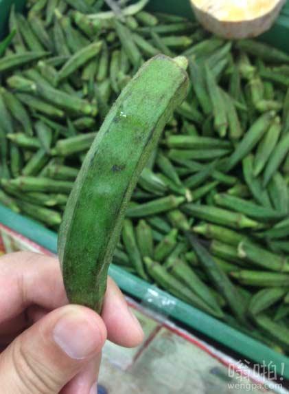 丝瓜和辣椒的合体,有谁知道这个学名叫什么