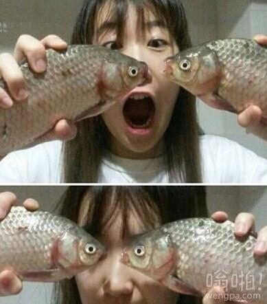 配上鱼的眼睛后