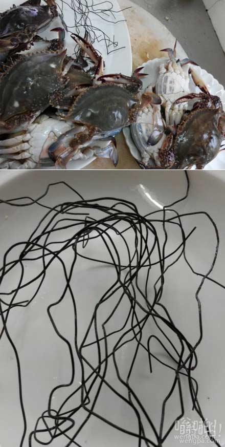 过节买3斤螃蟹 绑螃蟹钳的铁丝有一两