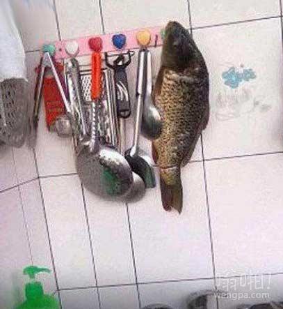 让媳妇收拾厨房的结果