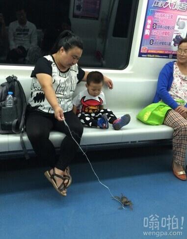 北京地铁惊现溜螃蟹 请问小朋友这个是大闸蟹么
