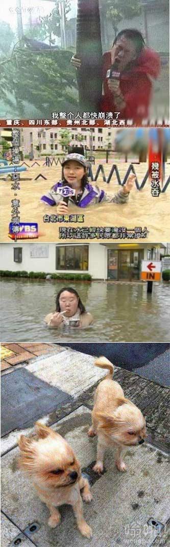 """台风""""海鸥""""来了后"""