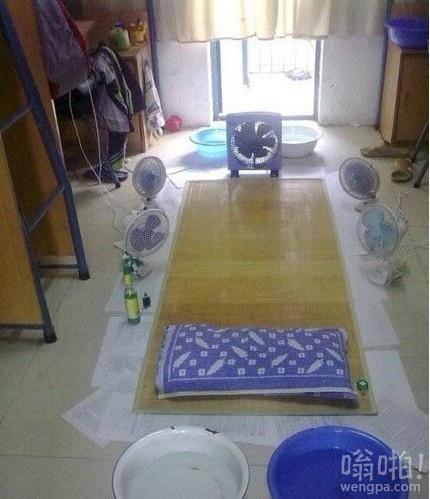 夏天寝室最佳配置:电扇,周边5台,上方2台,外加4盆水,全方位立体扫风!谁用谁舒坦……