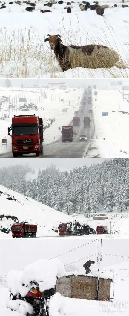 新疆哈密下雪了!