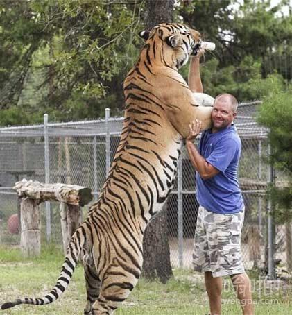 当年武松能赤手空拳把老虎打死,我想,也是因为醉了