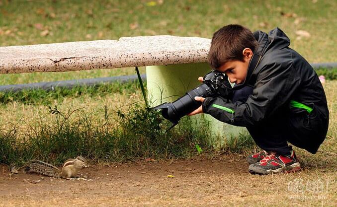9岁的西班牙男孩变为年轻的年度野生动物摄影师