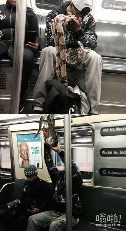 【视频】纽约男子地铁上耍自己的宠物–两条大蟒蛇