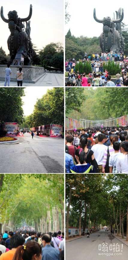 济南动物园十一国庆前后两天对比图:空荡VS爆满