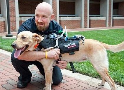 美国最新科技产品能让狗狗说话 准备应用于导盲犬和其他工作犬