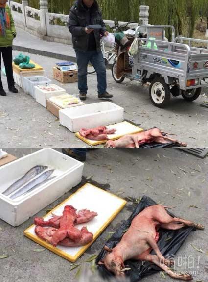 【图】西直门老头卖猫狗肉 现场血腥