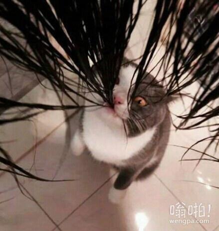 就洗个头,你不要那样的表情嘛