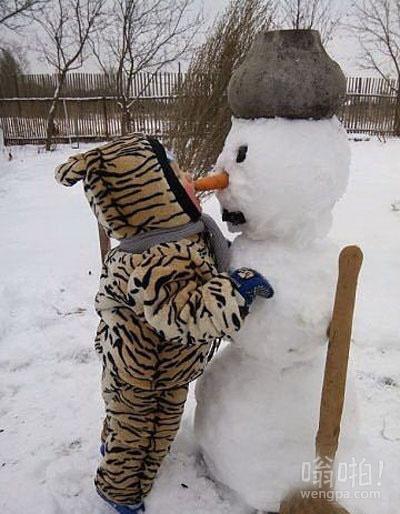 这只老虎多久没吃胡萝卜了