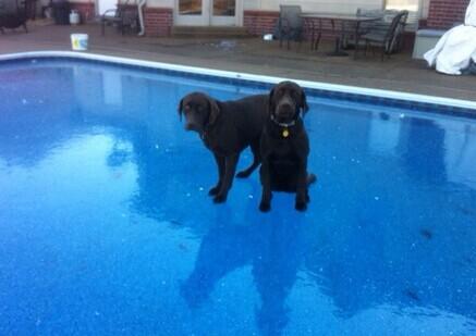 对不起女孩 今天不能游泳。