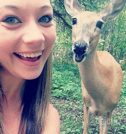 很上镜的微笑鹿