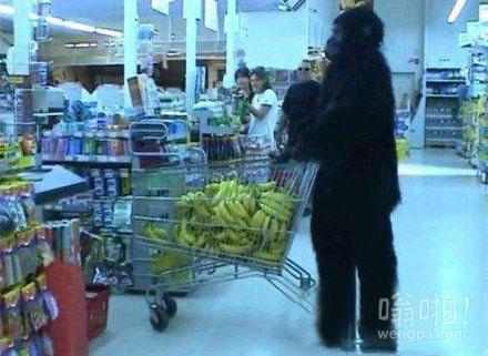 逛超市遇见猩猩扫货